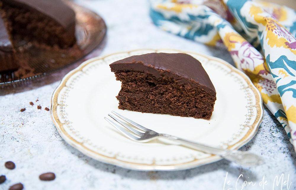vegan picnics - mocha cake by glutarama