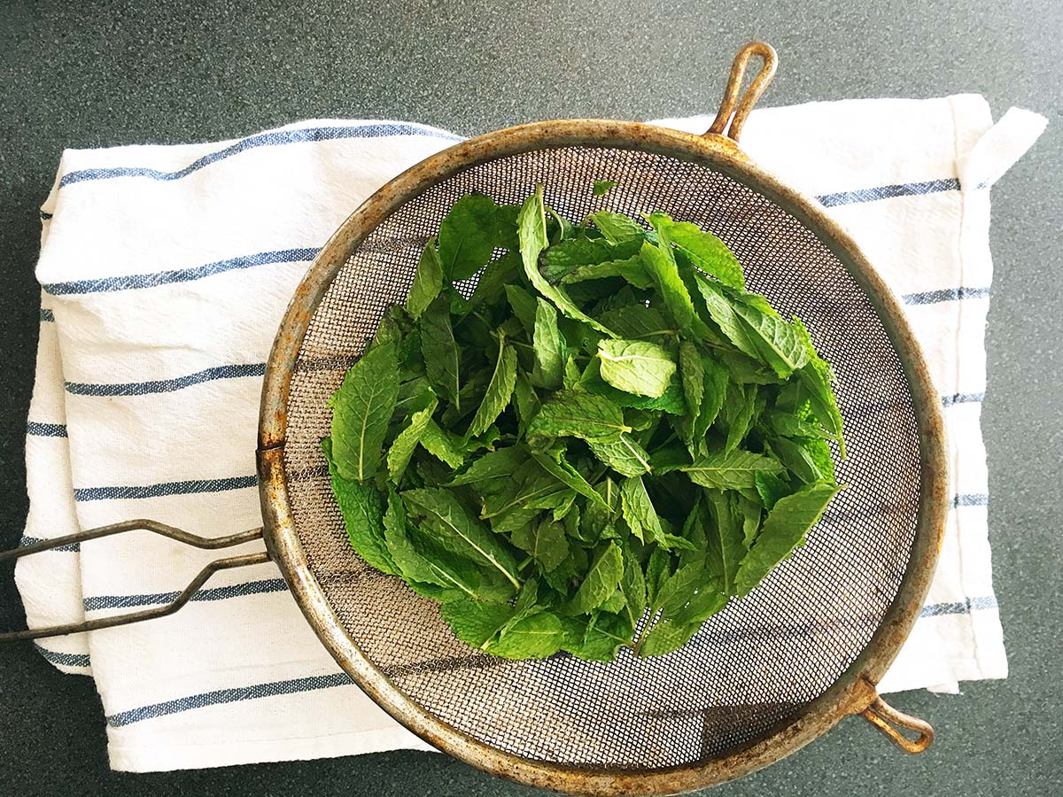 mint in sieve how to make homemade mint sauce