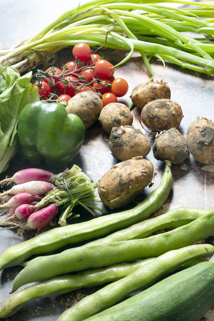 summer vegetables including broad beans, courgette, radish, pepper, tomatoes, new potatoes and spring onions