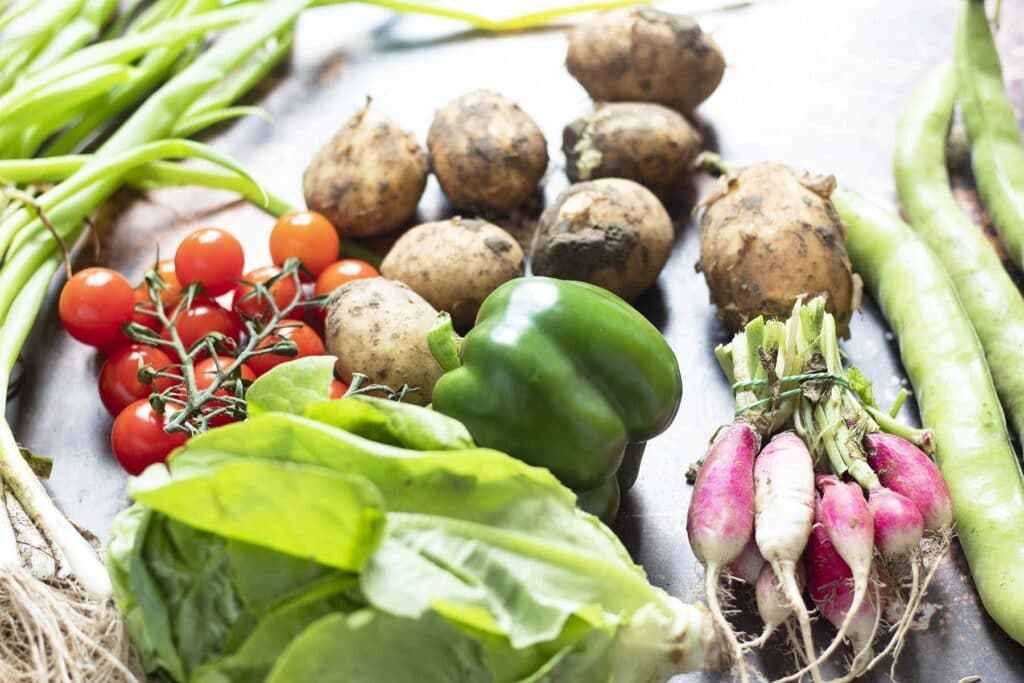 vegetables in season in July including broad beans, courgette, radish, pepper, tomatoes, new potatoes and spring onions