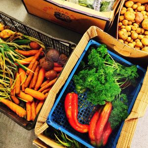 a selection of July's seasonal vegetables - red peppers, parsley, carrots, new potatoes, beetroot, greens in boxes