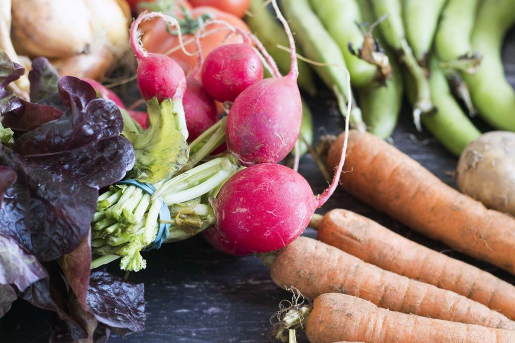 lettuce, onions, radish, broad beans and carrots - vegetables that are in season in august