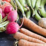 radish, carrots, broad beans - augusts seasonal vegetables