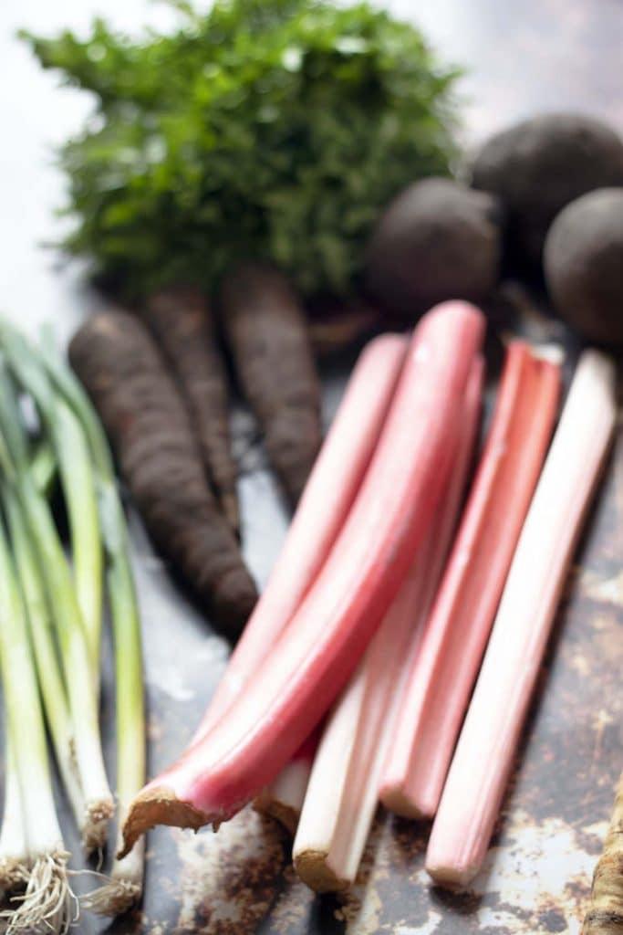 spring onions, rhubarb, carrots, lettuce, beetroot