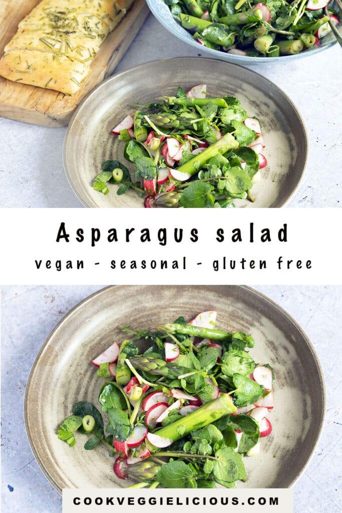 asparagus, watercress and radish salad on ceramic plate